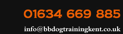call 01634 669 885 or email dog training kent medway